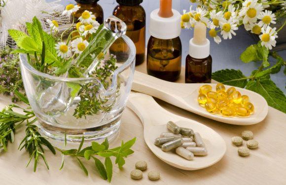 Inscrições abertas curso gratuito de Plantas Medicinais do SUS