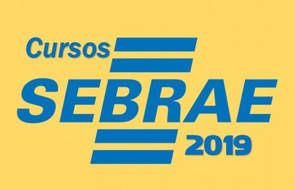 Cursos SEBRAE 2019 ensina novos e antigos Empresários a qualificar-se!
